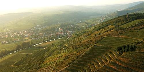 Weingut Fred Loimer - Langenlois (bio)