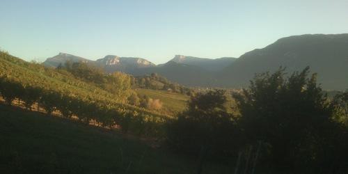 Domaine Giachino - Savoie (bio)