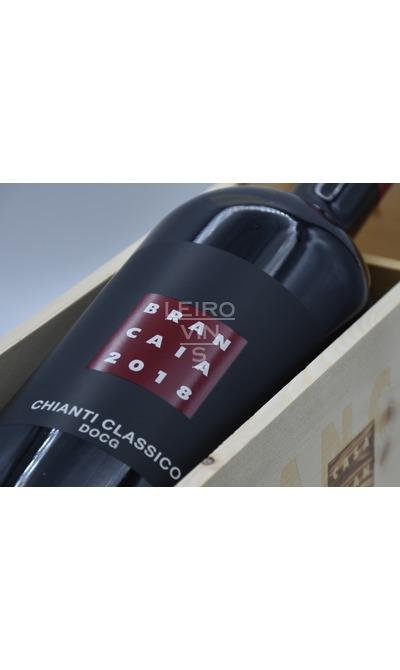 Brancaia Chianti Classico DOCG - Magnum